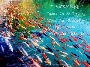 1-a fish (2)-001